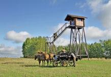 Rothirschjagd in Weißrussland mit Markus Lück