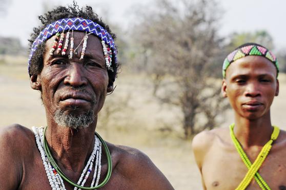 Reifer Afrikaner mit der großen Beute